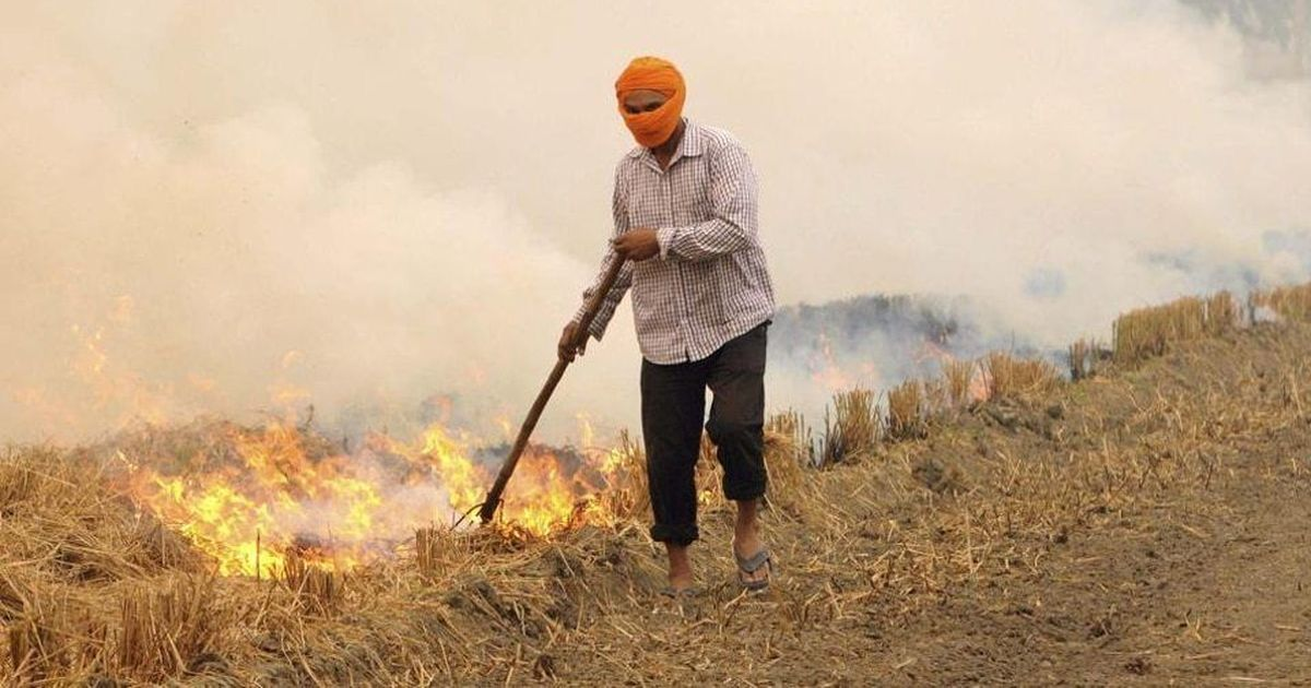 100 Crore Project Sanctioned For Tackling Crop Burning In North India